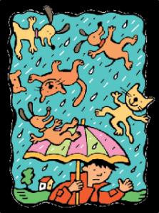 Rain Delay…