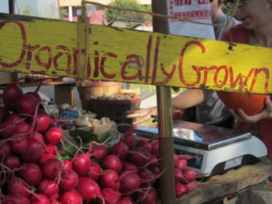 Trip to the Farmer's Market