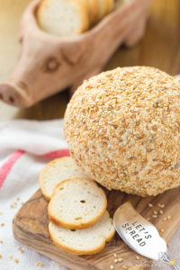 SOUTHWEST CHEESE BALL APPETIZER