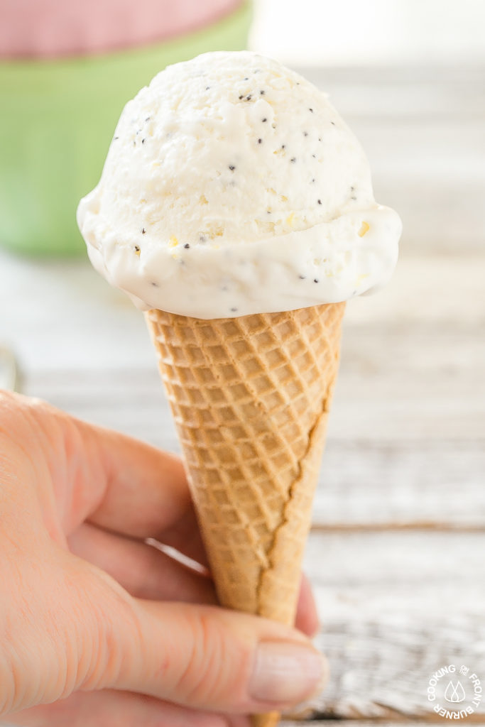 The Best Lemon Poppy Seed No Churn Ice Cream!